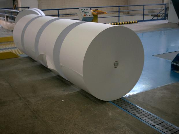 Rolls for a paper conveyor chain